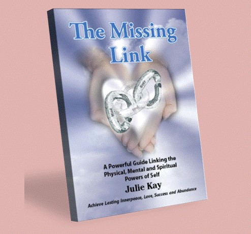 The Missing Link by Julie Kay